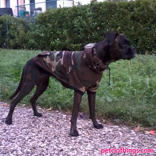 Cappotti per cani taglia grande