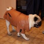 Braun Kunstlederjacke für Hunde