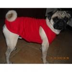 Einfarbig Rot Tank Top für Hunde