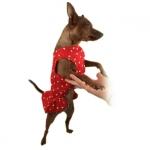 Rotes Tupfenkleid für Hunde