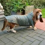 grün Regenmäntel für große Hunde