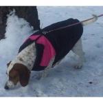 Rosa ärmellose Jacke für Große Hunde