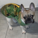 Veste Matelassée Camouflage avec fermeture sur dos