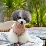 Hellrosa Pullover mit Spitze für kleine Hunde