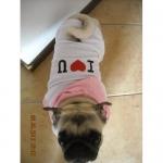 I LOVE YOU Hund T-Shirt mit Mütze weiß und rosa