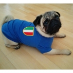 Italien T-Shirt für kleine Hunde
