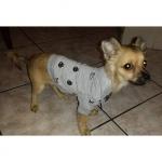 Grau Polo Shirts für Hunde FunnyFace
