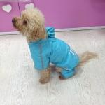 Impermeable FBI Azul 4 Patas para Perros Pequeños