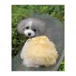Vestido Amarillo de Boda para Perros Pequeños y Chihuahua