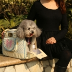 Bolso Perro Pet Design color Crema con Lunares Azul Claro
