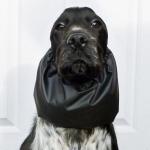 Wasserdicht Ohrenschutz für Hunde in Schwarz