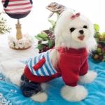 Seemanns sweatshirts ohne Kapuze für kleine Hunde