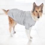Baumwolle T-Shirt für große Hunde in Grau
