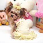 Gelb Sonnenkleid für Hund mit Rosa Bogen