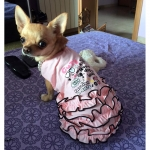Canottiera Rosa Fashion per Cani Piccoli