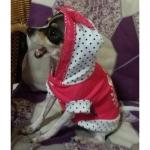 Felpa leggera Princess Rosa Corallo per Cani Piccoli