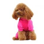 Magenta Anzug für kleine Hunde in Velveteen