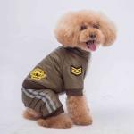 Winteranzug für Kleinen Hund Aviator Grün