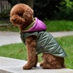Wasserdichter Grüner Hundemantel mit Lila Kapuze