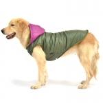 Grüne Wintermantel mit Lila Kapuze für Große Hunde