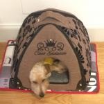 Bett Iglu-Form in Beige für kleine Hunde mit Blumendekor
