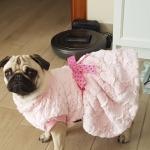 Rosa Schick Mantel für Hunde