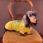 Brasilien T-Shirt für Dackel