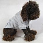 Grau Hund Sweatshirt