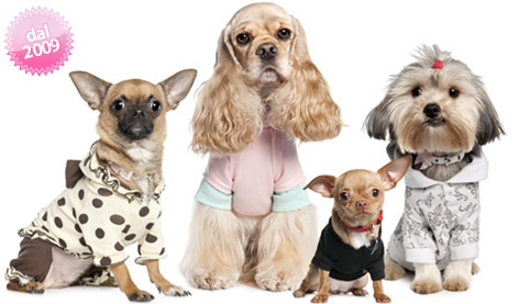 Abbigliamento per Cani: Vestiti, Cappottini, Piumini, Borse, Collari, Cucce