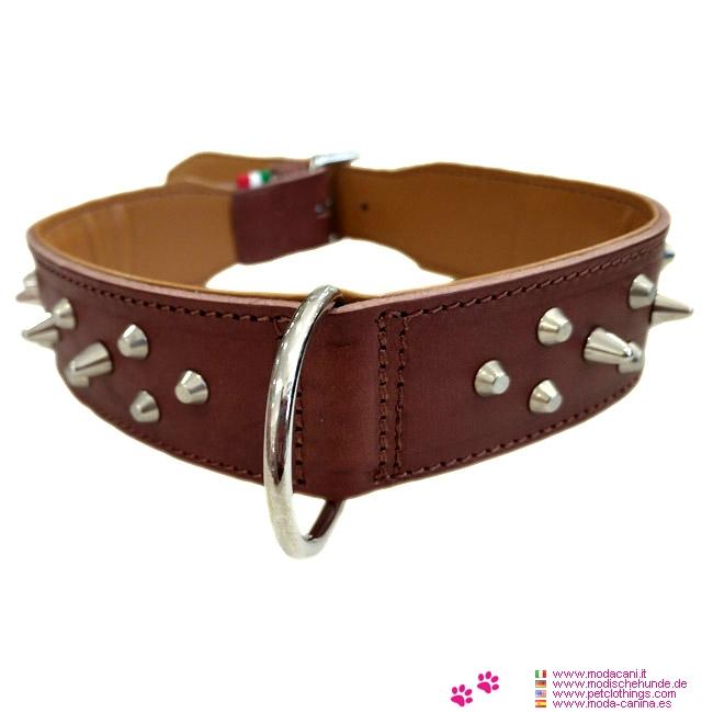 Hundehalsband Leder mit Spikes in Braun für Pitbull, Boxer, Hunde