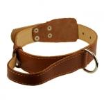 Hundehalsband mit Griff aus Leder Braun
