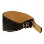 Windhund Halsband aus Leder Schwarz