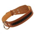 Lederhalsband für Mittelgroßen Hund  mit Schnürung in Braun
