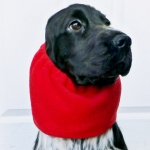 Snood for Long Eared Dogs in Red Fleece