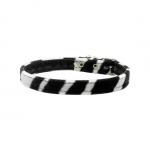 Schwarz und Weiß Zebra Halsband für kleinen Hund