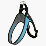 Harness Small/Medium Dogs in Blue Adjustable on the Belly