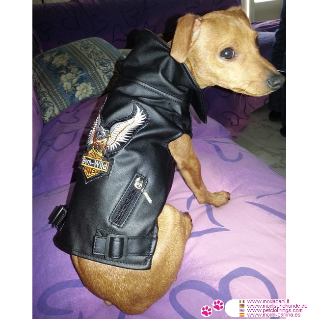 Faux Leather Rider Jacket For Dogs In Black Shipping To