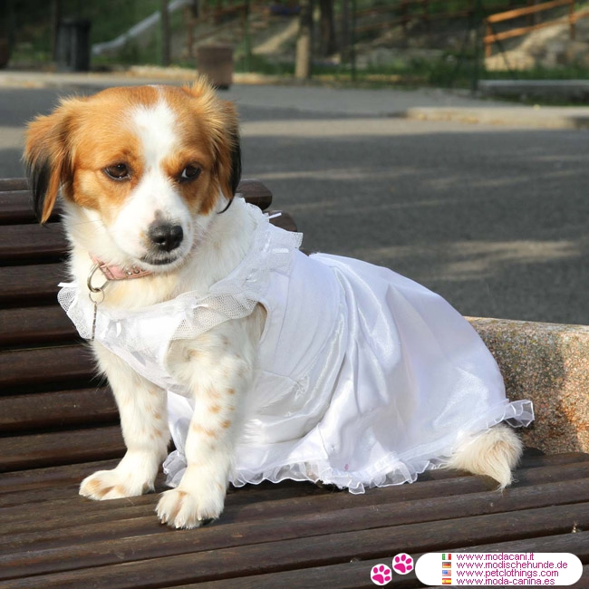 Dog Wedding Dress in White with veil shipping to USA and Canada