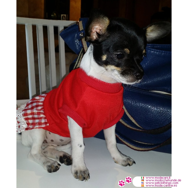 Red Dog Dress Small