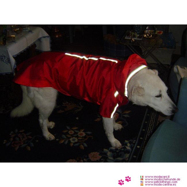 imperm able rouge pour chien de grande taille berger allemand bracco boxer labrador. Black Bedroom Furniture Sets. Home Design Ideas