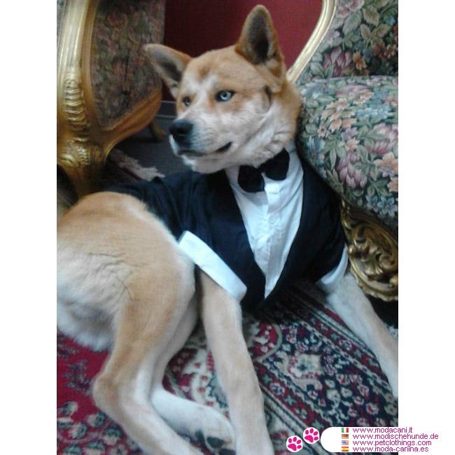 Matrimonio In Tedesco : Frac per cani di taglia grande pastore tedesco boxer