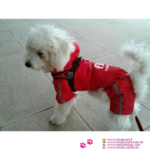 Fbi Red Raincoat For Small Dog 4 Legs Shipping To Usa And
