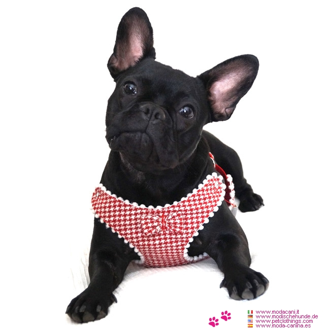 Pied De Poule Harness For Small Dogs Chihuahua Poodle