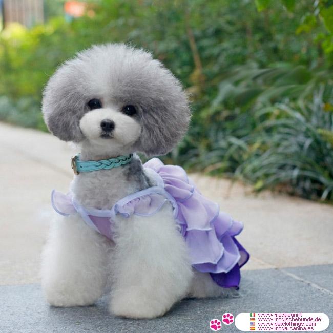 Favorito Vestito per Cani Piccoli con Balze in Color Lavanda MQ46