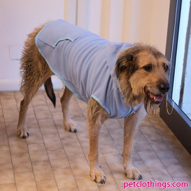 polaire azurin pour chiens de taille moyenne et grande. Black Bedroom Furniture Sets. Home Design Ideas