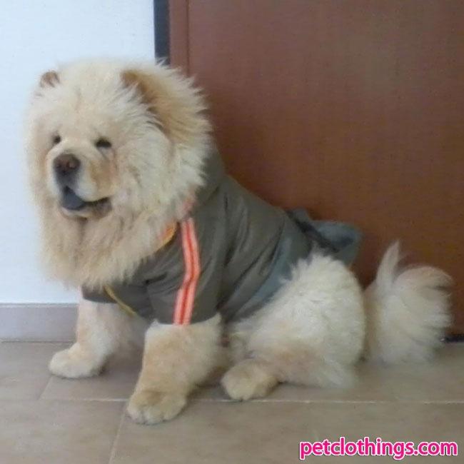 Impermeabile per cani di taglia grande alano boxer for Recinto per cani taglia grande