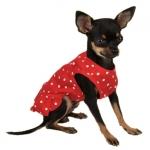 Vestito Rosso a Pois per Cani