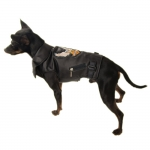 Faux Leather Rider Jacket for Dogs in Black