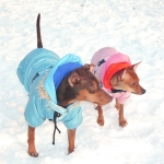 Onesie padded Jacket for Dog in Pink