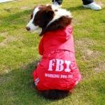 Impermeabile Rosso a 4 zampe per cani taglia grande